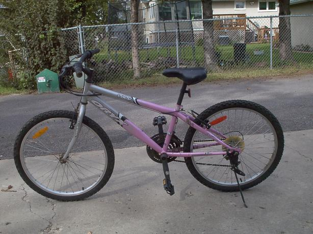 ADULT & YOUTH BIKES