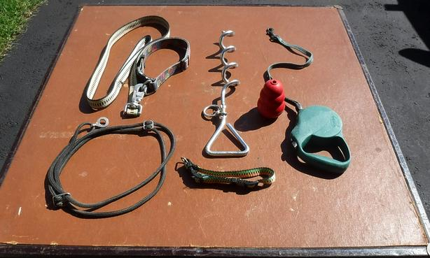 Several Dog Items