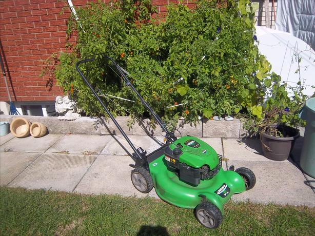 """Lawn Boy"" Lawnmower"