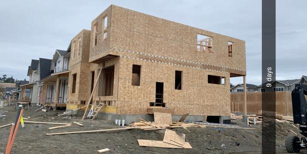 Crafty carpenter framer for hire for side jobs