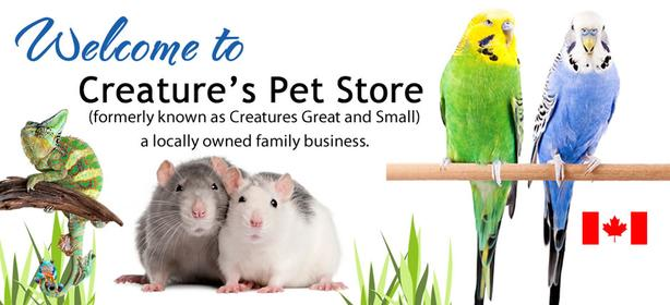 Creatures Pet Store - WE ARE OPEN!!