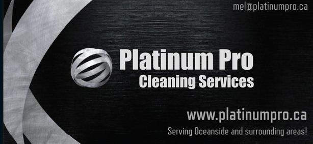 Would you like a cleaner that takes pride in your business?