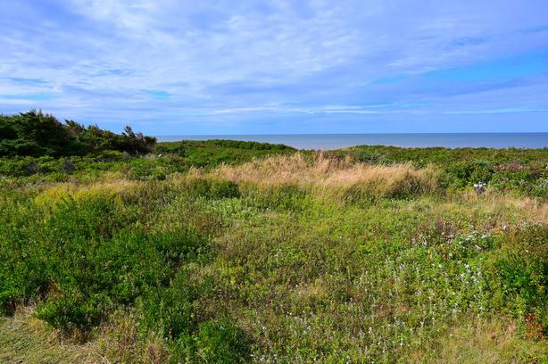 Waterfront Lot Savage Harbour Prince Edward Island