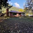 4 Bedroom 2 Bathroom Single Family Home on 1.67 Acres with a shop!