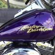 2008 Harley-Davidson® FXSTC - Softail Custom