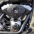 2014 Harley-Davidson® FLSTFB - Softail® Fat Boy® Lo