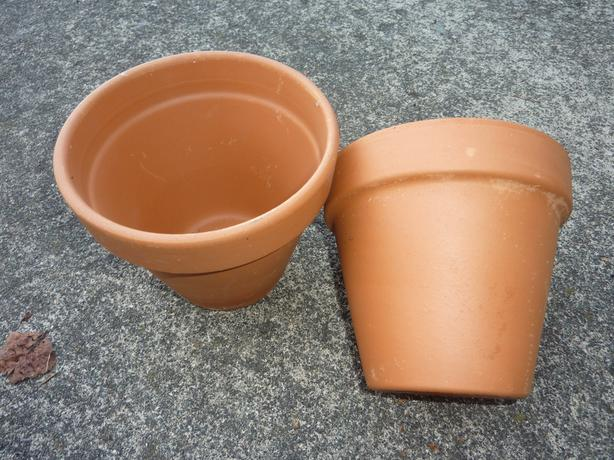 Two 6+ inch clay pots