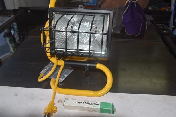 Quartz flood light