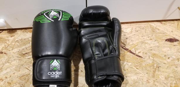 8 oz. Kickboxing Gloves