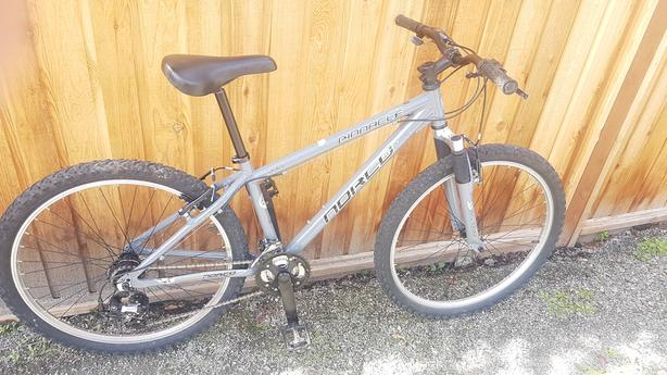 "KIDS 15"" 21 SPEED MOUNTAIN BIKE !"