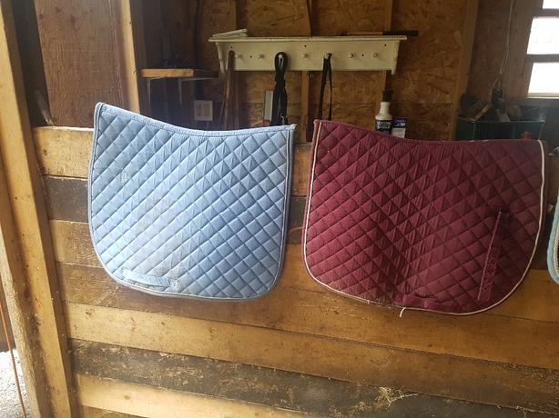 saddle pads and girth