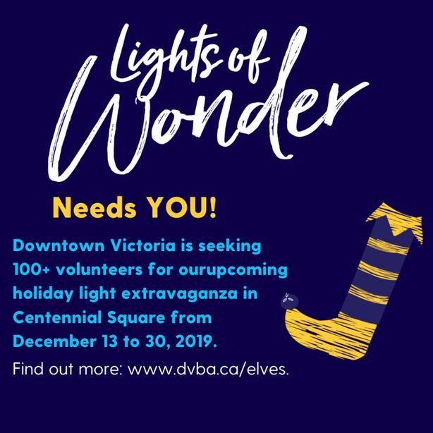 Lights of Wonder Volunteer