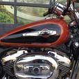 2011 Harley-Davidson® XL1200C - Sportster® 1200 Custom