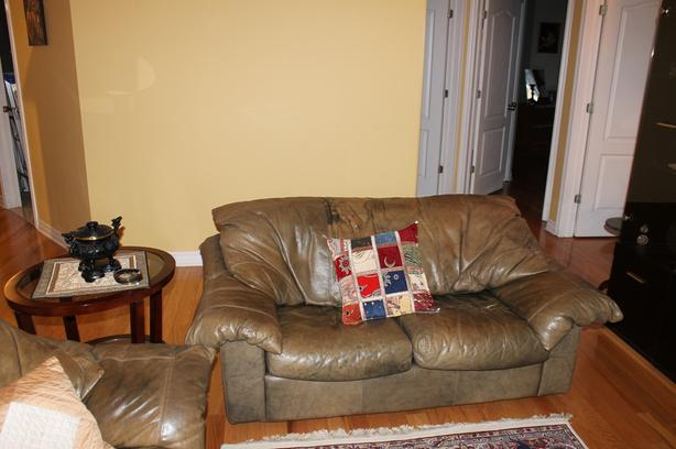 FREE: Leather 2 place couch