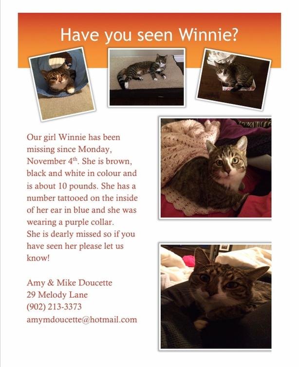 Have you seen Winnie?