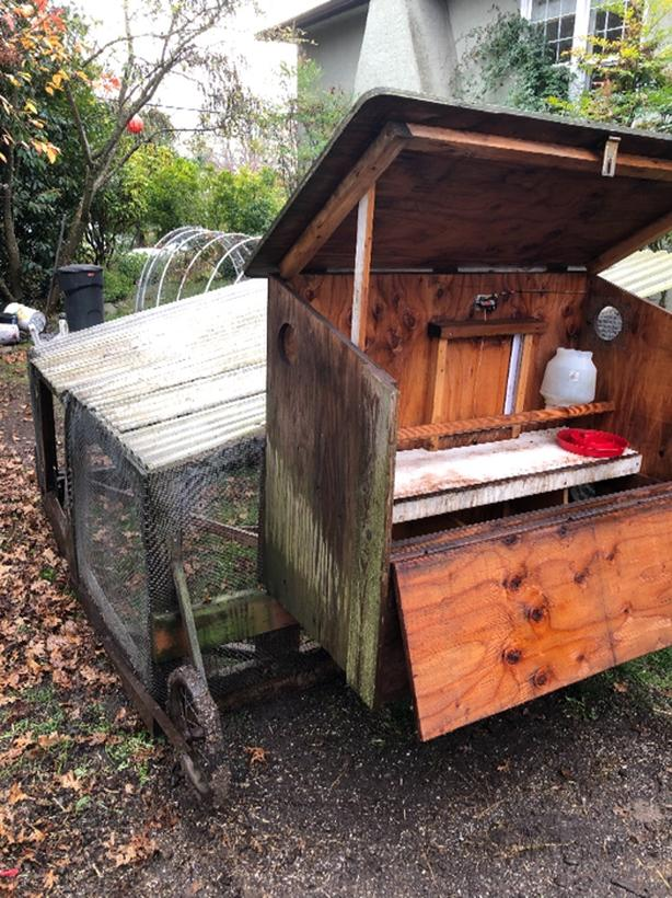 FREE chicken coop, enclosure and portable run