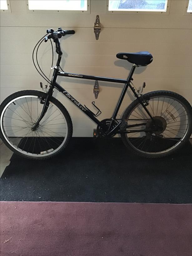 Men's Mountain Bike (PRICE DROP)