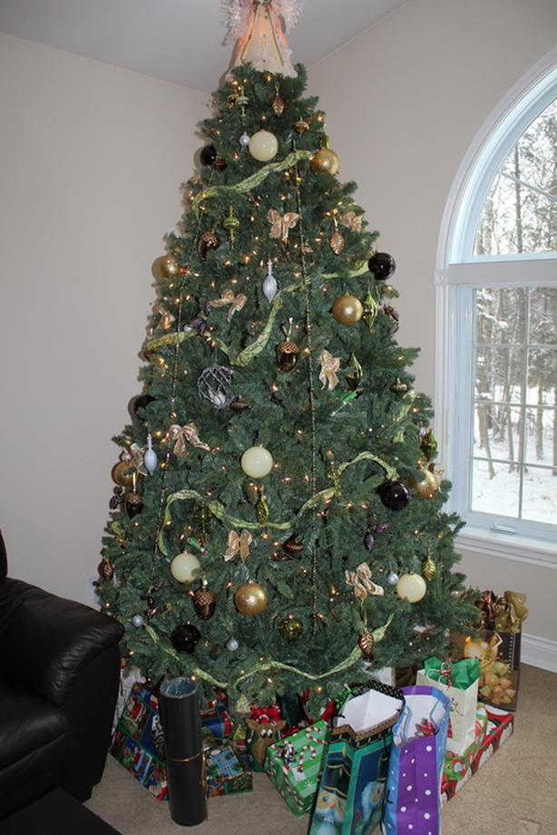 9 Foot Tall, Full, Pre-Lit, Indoor Tree