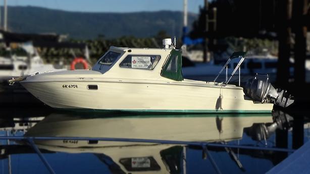 1972 Sea Ray 240 / 2004 Extensive Refit