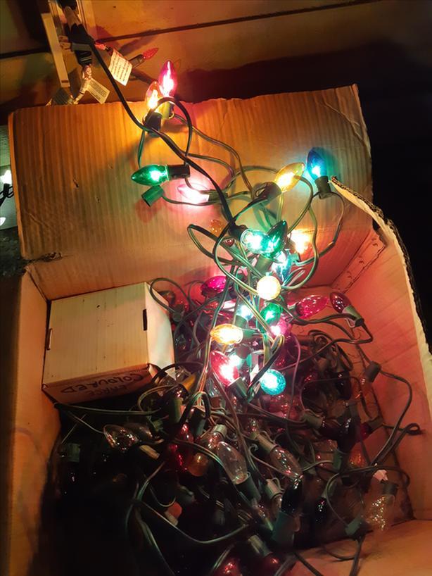 FREE: Christmas lights