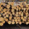 Yellow Cedar Posts