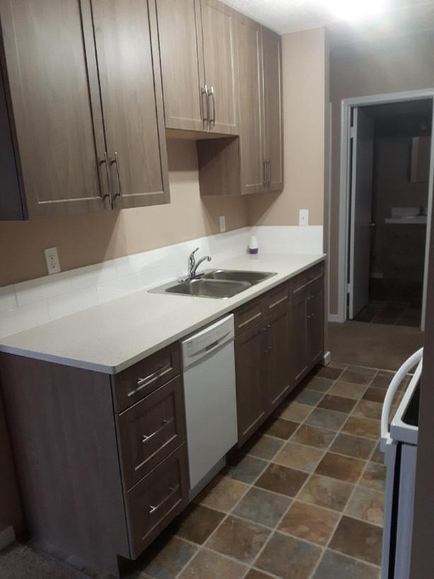 IMMEDIATE- Newly Reno'd  One Bedroom