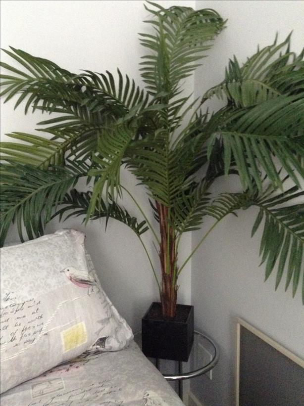 4.5 foot artificial fern