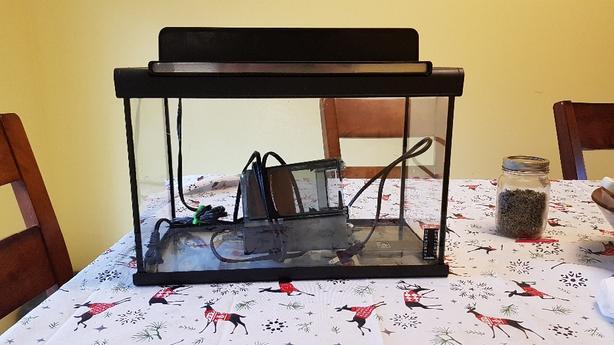 5 gallon Aquarium fish tank