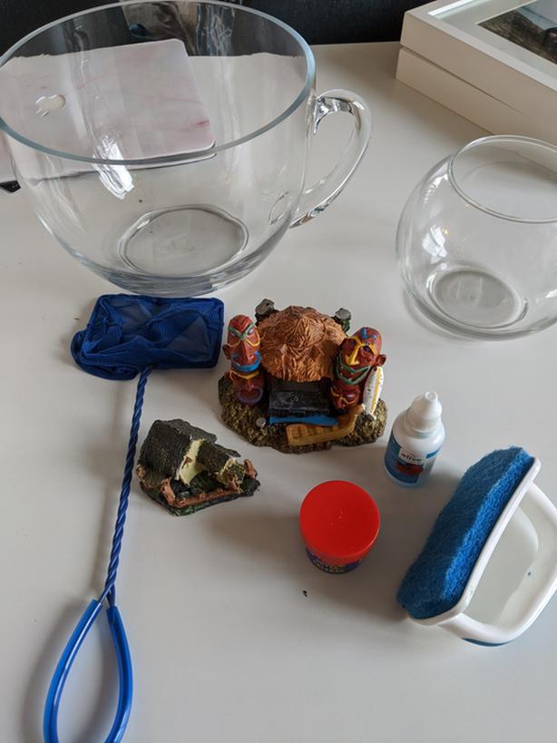 Beta fish starter kit