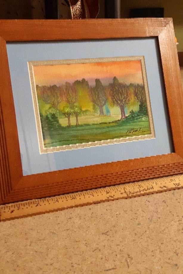 Framed original Watercolour paintings