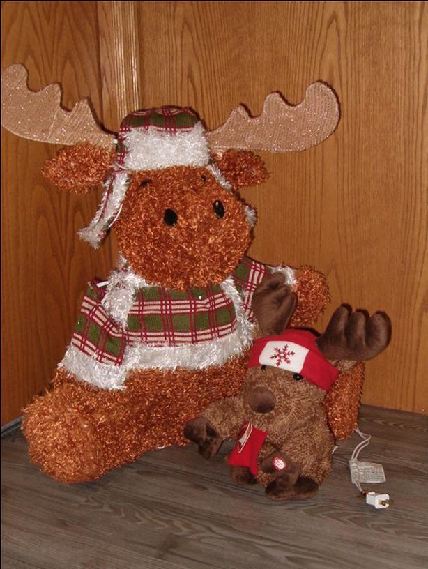 moose , christmas lighting moose ,