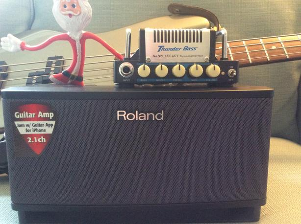 Portable Bass Head and GuitarPower Amp/Speaker
