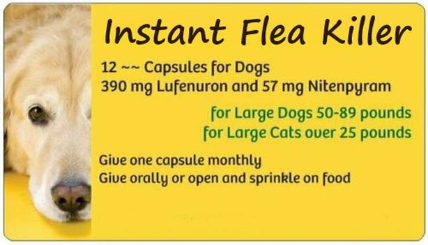 Instant Flea Killer, works in 30 minutes and lasts for 30 days. 12 pills.