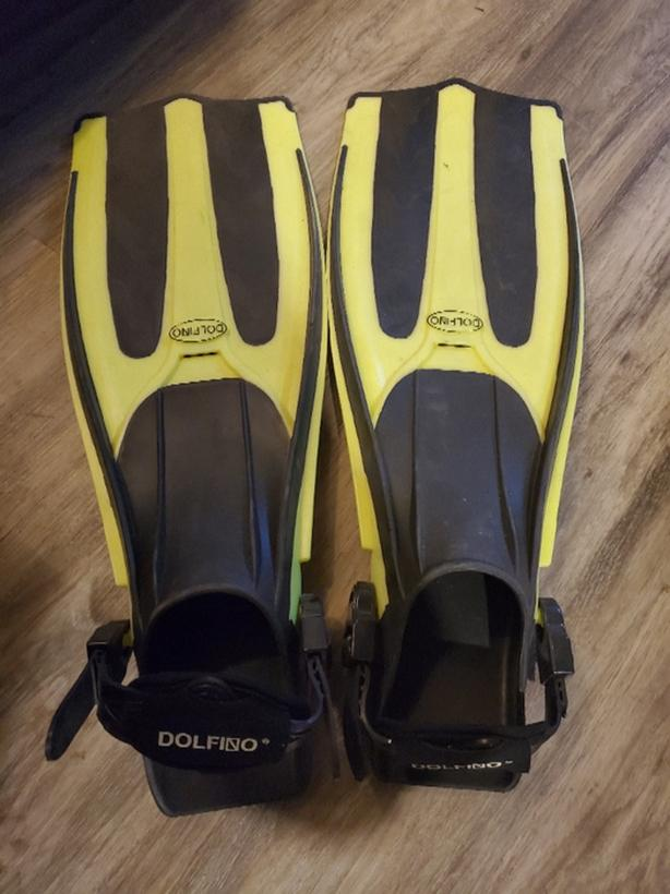 dolphino flippers