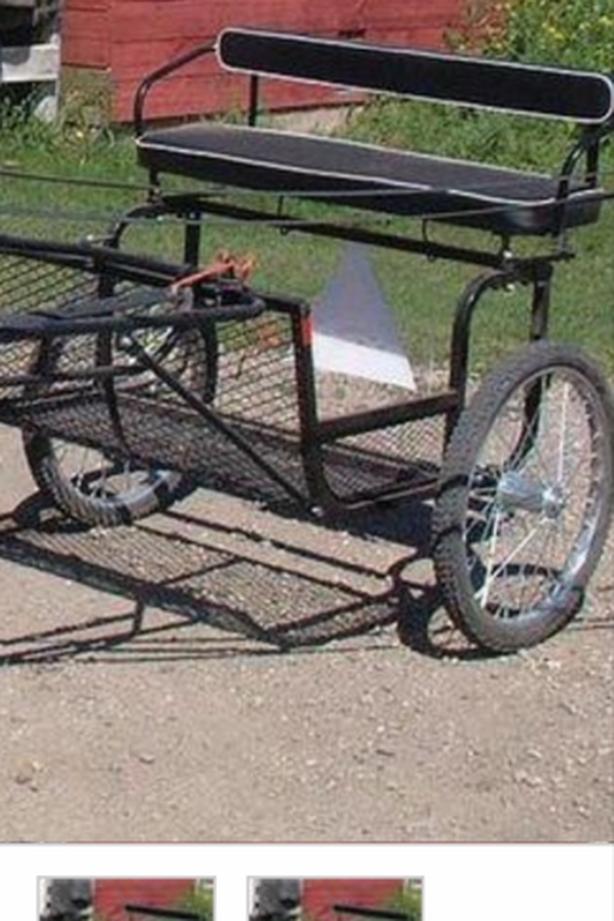 Miniature driving cart