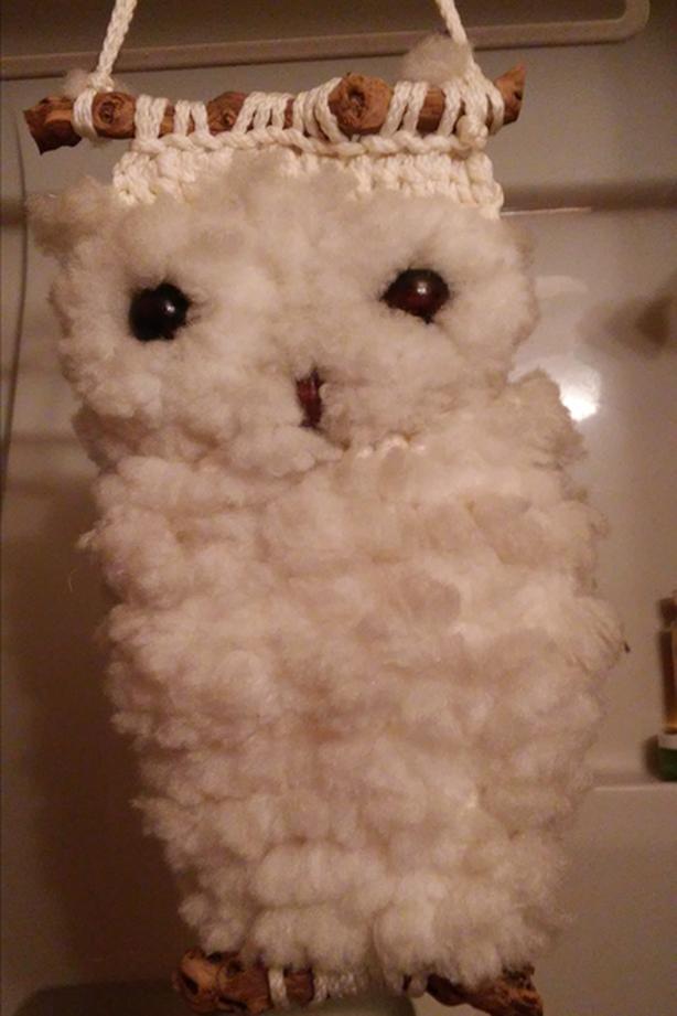 Macrame Owl Wall Hanging