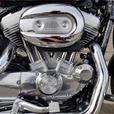 2011 Harley-Davidson® XL883L - Sportster® SuperLow®