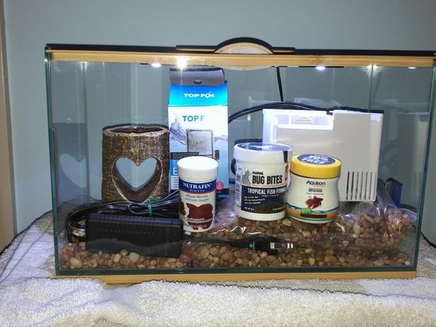 Small Aquarium and everything else