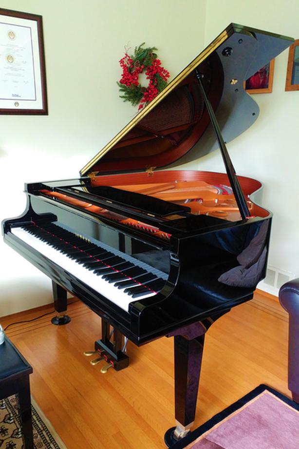 Piano/Theory/Music Teacher