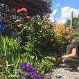 Dirty Works Gardening