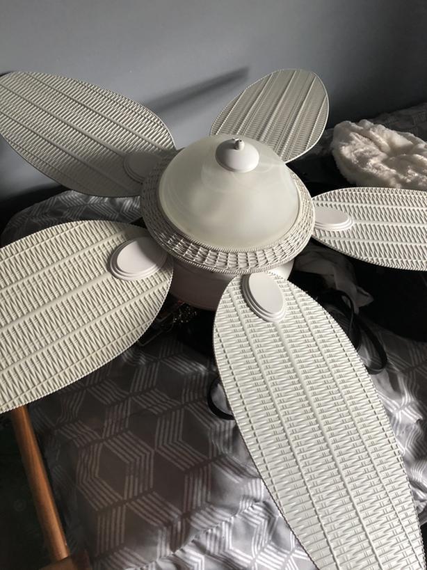 Beautiful white ceiling fan