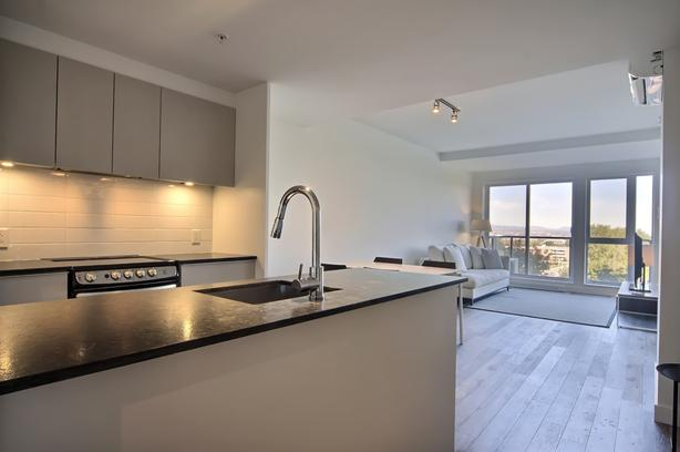 3 1/2 condo style apartment Semi-furnished Competitive $