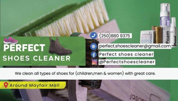 perfect shoes cleaner