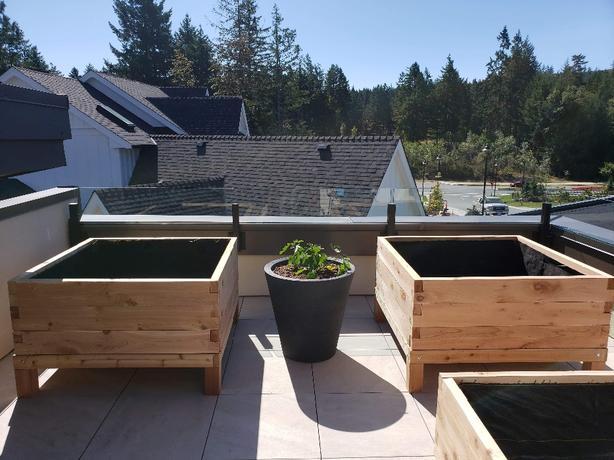 custom built red cedar planters