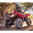 2019 Honda Rubicon 500 IRS EPS - TRX500FM6