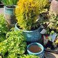 Premium quality landscaping services