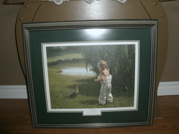 Ducks Unlimited Picture