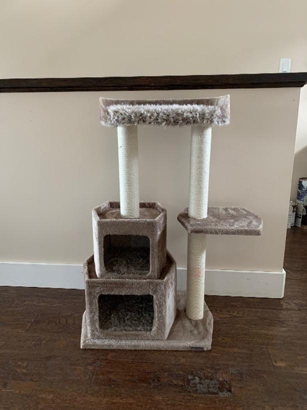 Cat Tower New