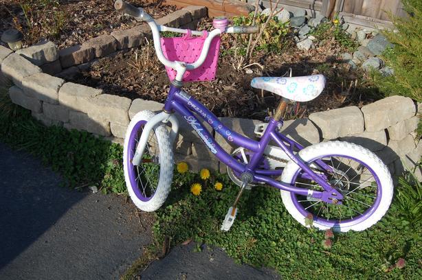 FREE: Girl's Bike