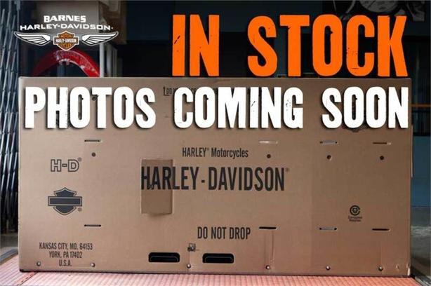 2007 Harley-Davidson® FLSTF
